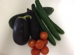 北海道の両親が作ってくれた茄子、ズッキーニ、トマト、キュウリ